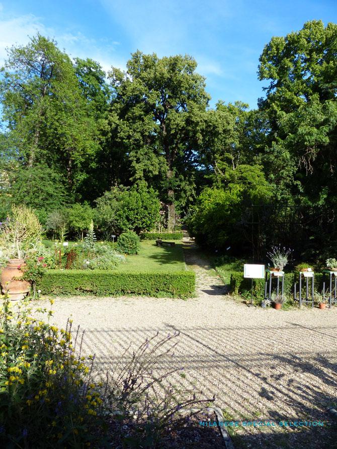 jardin des simples de Florence